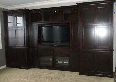 Built in wall unit with lighting