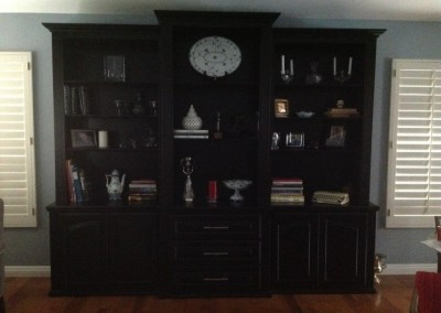 Built in cabinets in Ladera Ranch